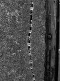 Sprung in der Wand mit Spinnen Stockbild