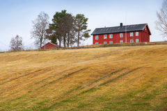 Sprung rural Norwegian landscape. With red house and field Stock Image