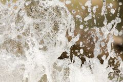 Spruzza dell'acqua in natura Immagine Stock Libera da Diritti