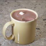 Spruzzata del cacao Fotografia Stock Libera da Diritti