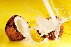 Spruzzata del latte di noce di cocco Fotografia Stock