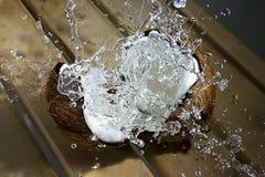 Spruzzata del latte di noce di cocco Fotografia Stock Libera da Diritti