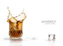 Spruzzata del whiskey isolata su fondo bianco Immagini Stock Libere da Diritti