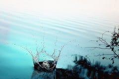 Spruzzata dell'acqua Fotografie Stock Libere da Diritti
