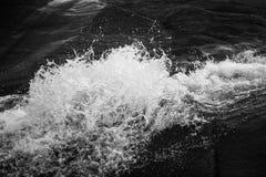 Spruzzata dell'acqua in BW Immagini Stock Libere da Diritti