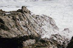 Spruzzata dell'acqua dell'oceano la roccia Fotografia Stock Libera da Diritti