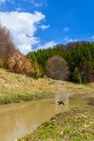 Spruzzata dell'acqua nel paesaggio della natura di primavera Immagine Stock