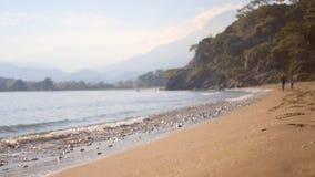 Spruzzata dell'onda del mare sulla spiaggia sabbiosa nel giorno di autunno stock footage