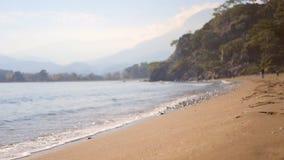 Spruzzata dell'onda del mare sulla spiaggia sabbiosa nel giorno di autunno archivi video
