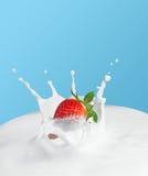 Spruzzata della fragola in latte Fotografia Stock