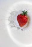 Spruzzata della fragola nel nero Fotografia Stock