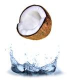 Spruzzata della noce di cocco Fotografia Stock