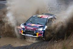 Spruzzata di Ciroen WRC Qatar Immagine Stock Libera da Diritti
