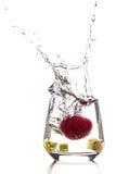 Spruzzata di frutti Fotografia Stock