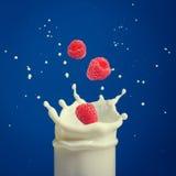 Spruzzata di latte, causata cadendo in un lampone maturo immagini stock libere da diritti