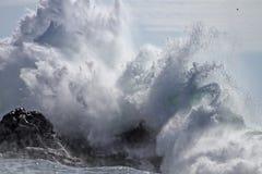 Spruzzata di schianto dell'onda Fotografie Stock