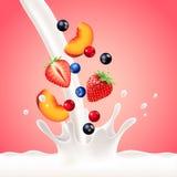 Spruzzata di versamento del latte con il fondo di vettore di frutti Fotografie Stock