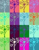 Spruzzata di Warhol Sun sull'albero Fotografie Stock