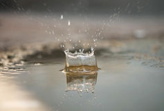 Spruzzata o goccia di acqua dell'acqua Fotografia Stock Libera da Diritti