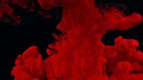 Spruzzata rossa astratta dell'inchiostro in acqua su fondo nero, movimento lento stock footage