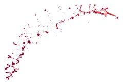 Spruzzata rossa isolata su fondo bianco Immagini Stock