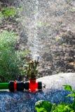 Spruzzatore automatico del prato inglese del giardino nell'erba d'innaffiatura di azione Concetto verde del fondo della natura Fotografia Stock