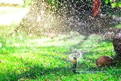 Spruzzatore automatico del prato inglese del giardino nell'erba d'innaffiatura di azione Verde Immagine Stock Libera da Diritti