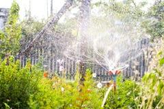 Spruzzatore del giardino Immagine Stock Libera da Diritti