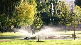 Spruzzatore del giardino nel parco della città video d archivio