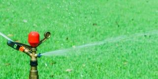 Spruzzatore dell'acqua nel prato Fotografie Stock