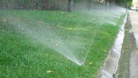 Spruzzatore dell'acqua in parco pubblico Sistema d'irrigazione automatico che innaffia il prato inglese dell'erba verde all'apert video d archivio