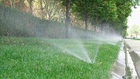 Spruzzatore dell'acqua in parco pubblico Sistema d'irrigazione automatico che innaffia il prato inglese dell'erba verde all'apert archivi video