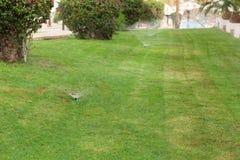 Spruzzatore in giardino che innaffia il prato inglese Concetto d'innaffiatura automatico dei prati inglesi immagine stock libera da diritti