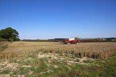 Spruzzatore rosso e bianco del raccolto Immagine Stock Libera da Diritti