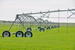 Spruzzatori di irrigazione in un campo dell'azienda agricola Fotografie Stock Libere da Diritti