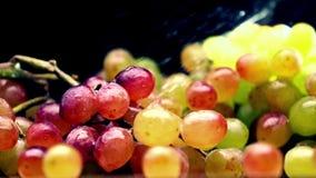 Spruzzatura dell'acqua sopra il mazzo multicolore dell'uva Video di movimento lento eccellente stock footage