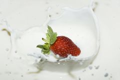 Spruzzatura della fragola in un latte Fotografie Stock Libere da Diritti
