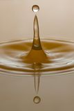 Spruzzatura di goccia dell'acqua Fotografie Stock Libere da Diritti