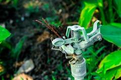 Spruzzi vecchio rotto non può open water Fotografie Stock Libere da Diritti