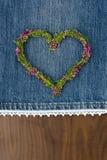 Spruzzo del cuore Fotografia Stock Libera da Diritti