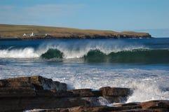 Spruzzo dell'onda Immagine Stock