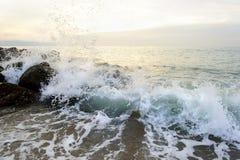 Spruzzo della spruzzata dell'oceano Immagini Stock