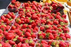 Sprzedaż świeże truskawki Zdjęcie Stock