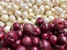 Sprzedaż, jedzenie, warzywa i rolnictwa pojęcie, - zamyka w górę białej, czerwonej cebuli, obrazy stock