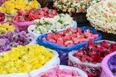 sprzedaż kwitnie obraz stock