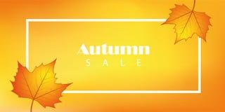 Sprzedaż sztandar z jesień liśćmi royalty ilustracja