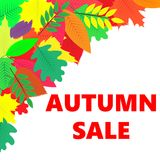Sprzedaż sztandar z jesień liśćmi Zdjęcia Royalty Free