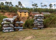 Sprzedaż torby węgiel drzewny na stronie droga, Madagascar Fotografia Royalty Free