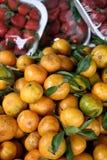 sprzedaży świezi tangerines Obrazy Stock