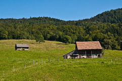Sprzedaże Fribourg Fotografia Royalty Free